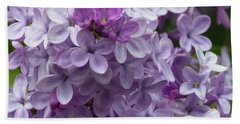 Lavender Lilacs Beach Towel