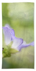 Lavender Beach Sheet by Robert FERD Frank