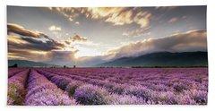 Lavender Sun Beach Sheet