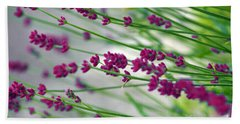 Beach Towel featuring the photograph Lavender by Susanne Van Hulst