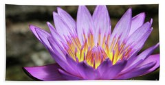 Lavender Water Lily #3 Beach Towel