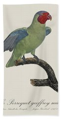 Le Perroquet Geoffroy Male / Red Cheeked Parrot - Restored 19th C. By Barraband Beach Towel