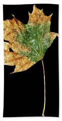Leaf 9 Beach Towel
