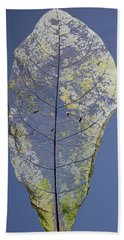 Beach Towel featuring the photograph Leaf by Debbie Cundy