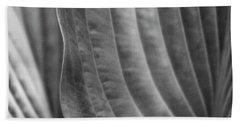 Leaf - Edgy Path Beach Sheet by Ben and Raisa Gertsberg