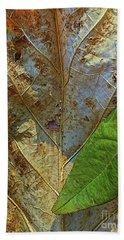 Leaf Forest Beach Sheet by Todd Breitling
