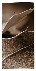 Leaf Study In Sepia II Beach Towel