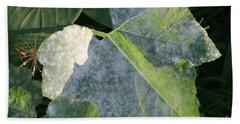 Calming Leafy Glade Beach Towel