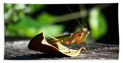 Leafy Praying Mantis Beach Towel