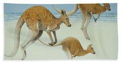 Kangaroo Beach Sheets