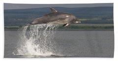 Leaping Bottlenose Dolphin  - Scotland #39 Beach Sheet