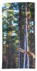 Leaping Red Squirrel Tall Beach Towel