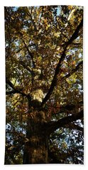 Leaves And Branches Beach Towel