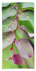 Leaves And Raindrops Beach Towel