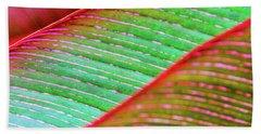 Leaves In Color  Beach Towel
