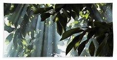 Leaves In The Sun Beach Towel by Odon Czintos