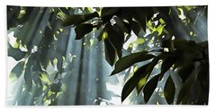 Leaves In The Sun Beach Towel