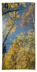 Leaves Of Fall Beach Sheet