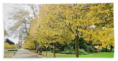 Beach Towel featuring the photograph Leipzig Memorial Park In Autumn by Ivy Ho