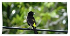 Lemon-rumped Tanager Beach Towel
