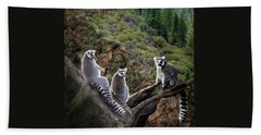 Lemur Family Beach Towel