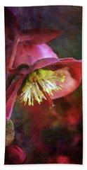 Lenten Rose Bowing To The Sun 8712 Idp_2 Beach Sheet