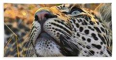 Leopard Aloft Beach Towel