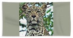 Leopard Face Beach Towel
