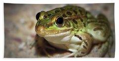 Beach Sheet featuring the photograph Leopard Frog by Elaine Malott
