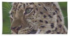Leopard Beach Sheet