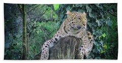 Leopard Lookout Beach Towel