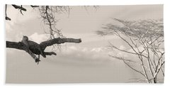 Beach Towel featuring the photograph Leopard Resting On A Tree by Stefano Buonamici