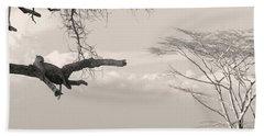 Leopard Resting On A Tree Beach Towel