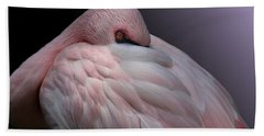 Lesser Flamingo Resting Beach Towel