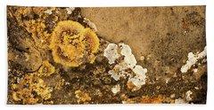 Beach Sheet featuring the photograph Lichen On The Piran Walls by Stuart Litoff