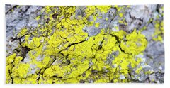 Beach Towel featuring the photograph Lichen Pattern by Christina Rollo