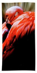 Beach Towel featuring the photograph Life In Pink by Ken Frischkorn