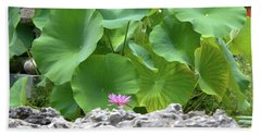Light Purple Water Lily And Large Green Leaves Beach Sheet