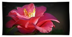 Beach Towel featuring the photograph Lighted Camellia by AJ Schibig