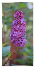 Lilac Bloom- Photography By Linda Woods Beach Towel
