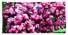 Lilac Blossoms Abstract Soft Effect 1 Beach Towel
