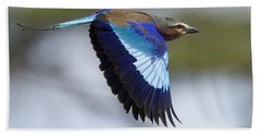 Lilac-breasted Roller-signed Beach Towel