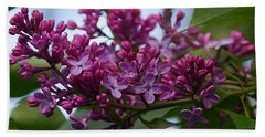 Lilac Buds Beach Sheet