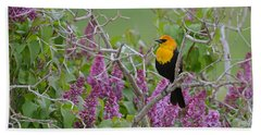 Lilacs And Yellowhead Blackbirds Beach Sheet