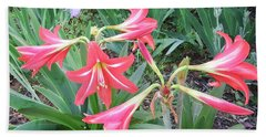 Beach Towel featuring the photograph Lillies by Cathy Harper