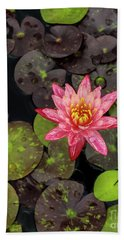 Lilly Pad, Red Lilly Beach Towel