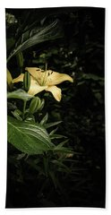 Beach Towel featuring the photograph Lily In The Garden Of Shadows by Marco Oliveira
