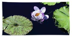 Lily Love II Beach Towel by Suzanne Gaff