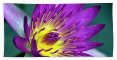 Lily On The Water Beach Towel