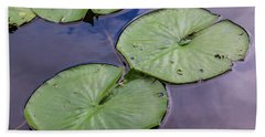Lily Pad Reflections Beach Sheet